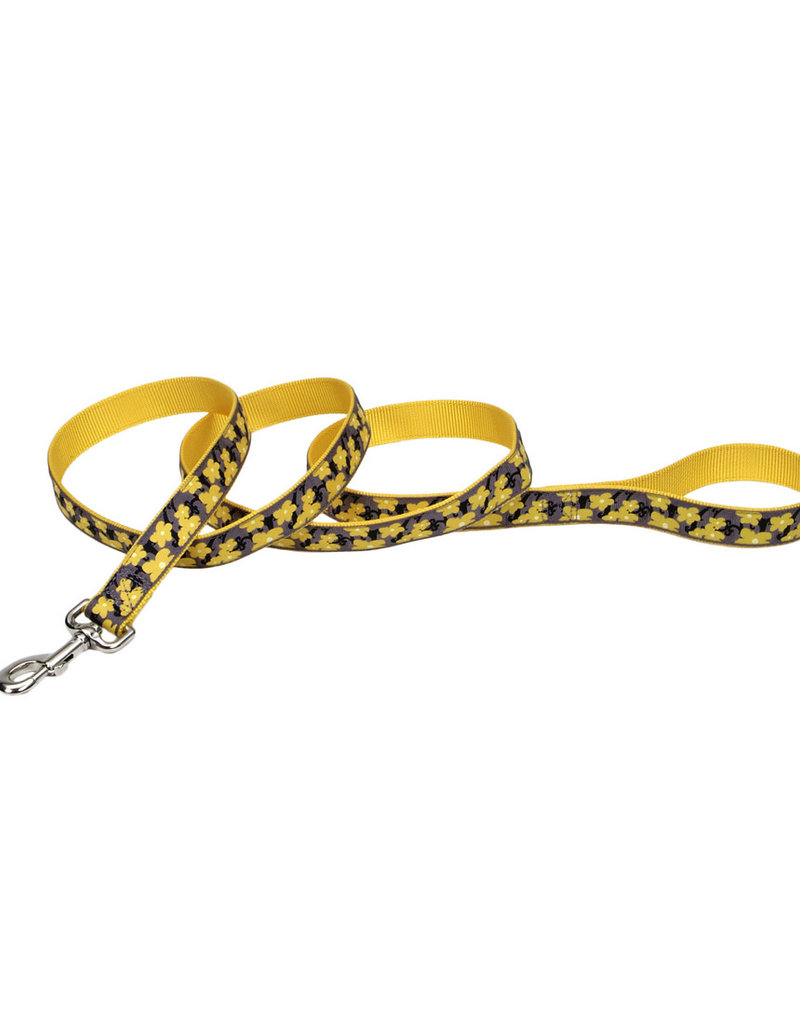 "COAST 5/8"" Ribbon Leash 4ft Dog"