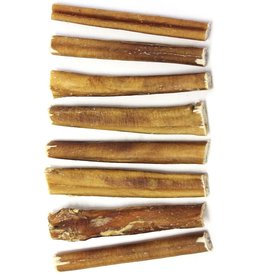 """The Natural Dog Company The Natural Dog Company Thick Bully Stick Natural Scent Dog Chew 6"""""""