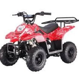 TMS 110 Youth ATV