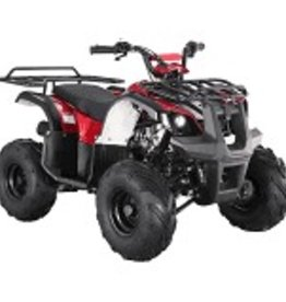 TMS TForce 150 Youth ATV