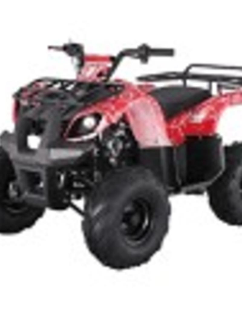 TMS 125D Youth ATV