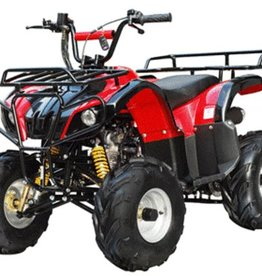 TMS 110 D Youth ATV