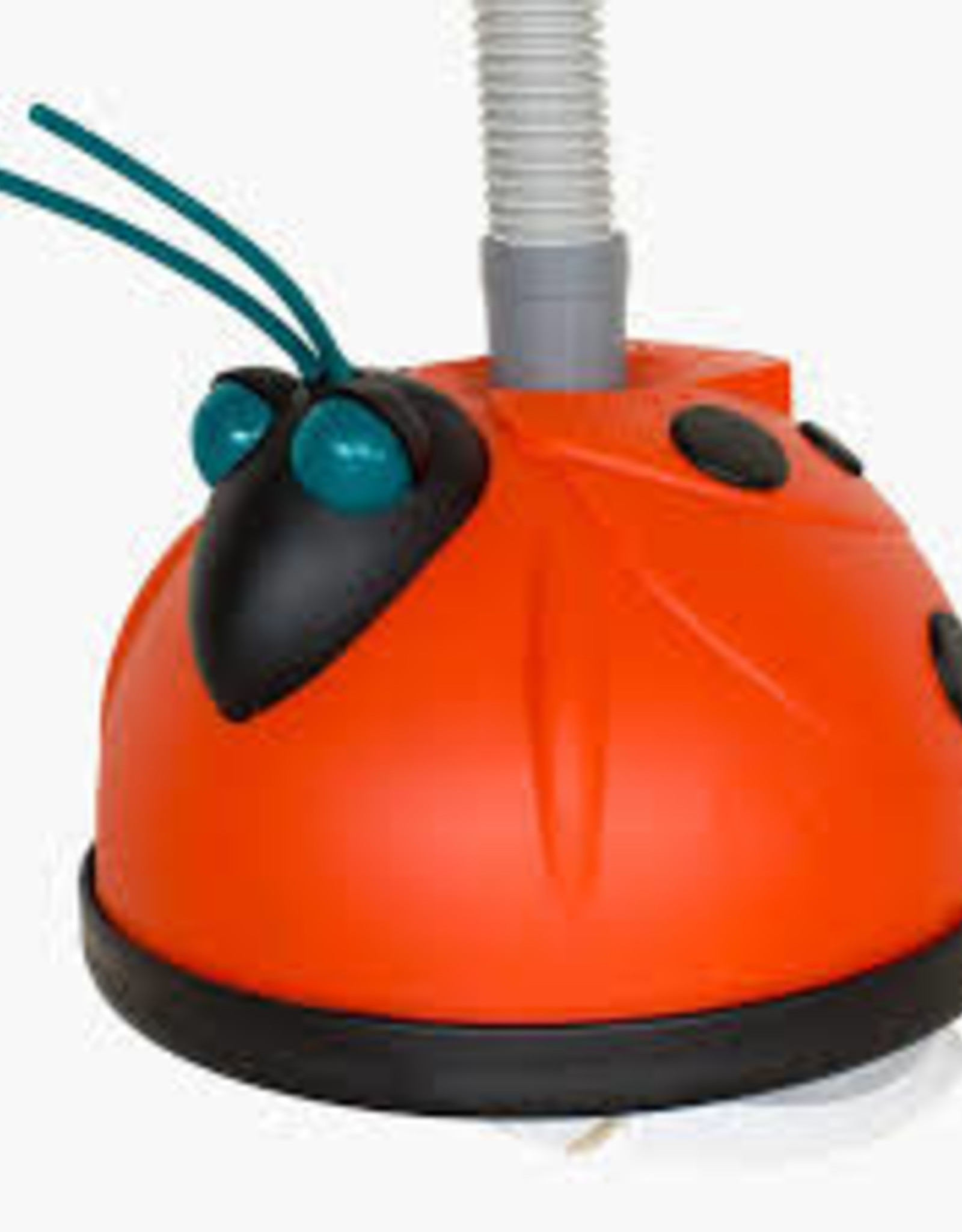 SPS Aqua Bug