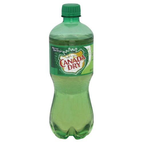 Canada Dry Ginger Ale Regular 20 fl oz