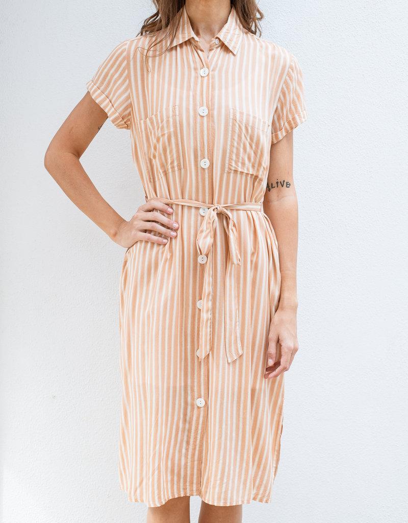 Adelante Tropics Dress