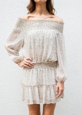 Adelante Ferfie Chiffon Dress
