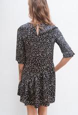 Adelante Black Polkadot Dress