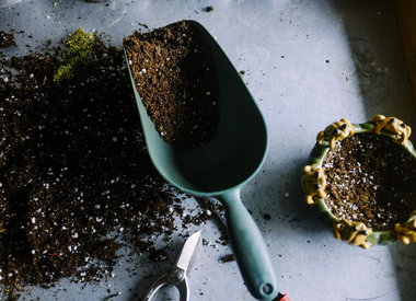 Fertilizer, Compost, and Potting Soil