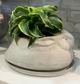 Creative Co-Op Cement Rabbit Planter with Saucer (Sold as 2 Piece Set)