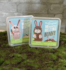 Two's Company Melting Bunny
