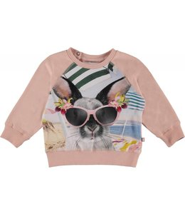 Molo Molo Elsa Sweatshirt-Vacation Bunny