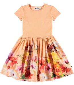 Molo Cissa Dress