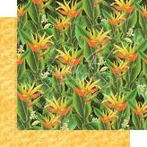 Graphic 45 Lost In Paradise Cardstock 12X12 (utopian fields)