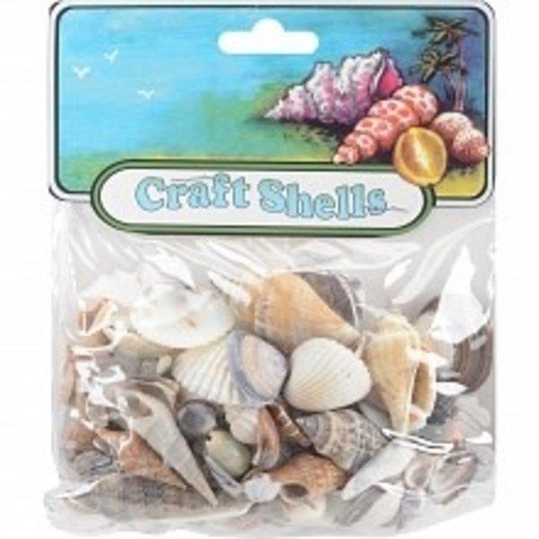 U.S Shell - Craft Shells 20/pkg (small)