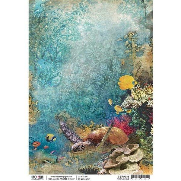 Ciao Bella Rice Paper Sheet A4 (turtle cove)