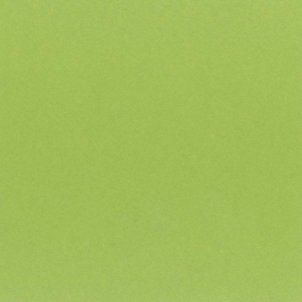 My Colors Classic 80lb Cardstock 12X12 (kiwi)