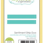 Taylored Expressions Dies (sentiment strip duo)
