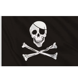 DRAPEAU IMPORT Drapeau Pirate Flag 3X5 (Noir Blanc)