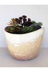 Unurth Ceramics Canyon Planters-Sherbet