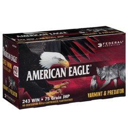 Federal Federal American Eagle 243 Win 75gr JHP Varmint 40rd box (AE24375VP)