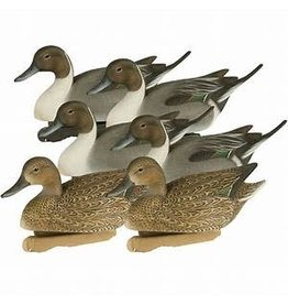 FA Brand FA Decoys gunner HD Pintail floating 6pk (474340)