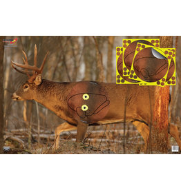 "Birchwood Casey Birchwood Casey Eze-Scorer Whitetail Deer 23""x35"" (37431)"