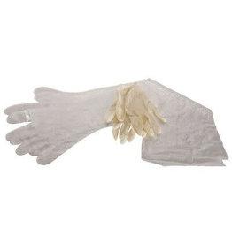 Allen Allen 51  Field Dressing Gloves  1 Pr Each Latex Surgical