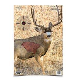 Birchwood Casey Birchwood Casey Pregame Splattering Deer Target 35401