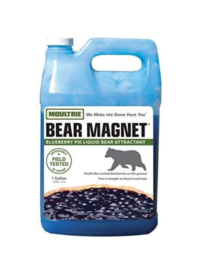 Moultrie Moultrie Bear Magnet Blueberry Pie