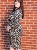 Janette Plus Leopad Animal Print Dress -