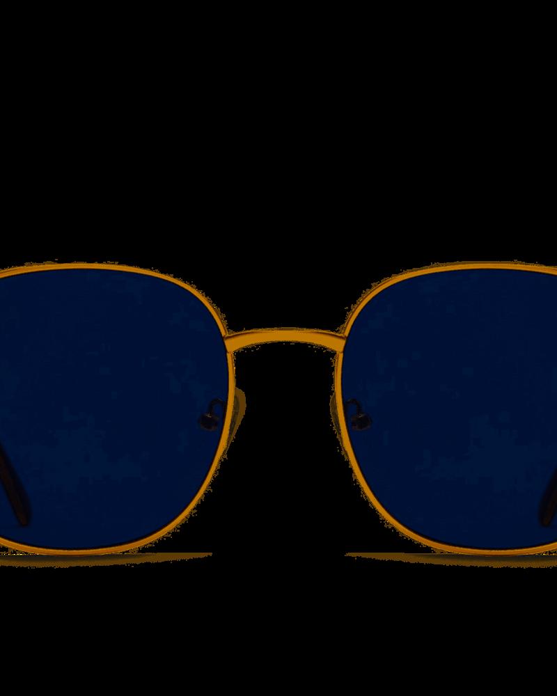 Jezabell Sunnies Gold/Smoke