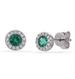 Luvente White Gold Emerald Halo Studs