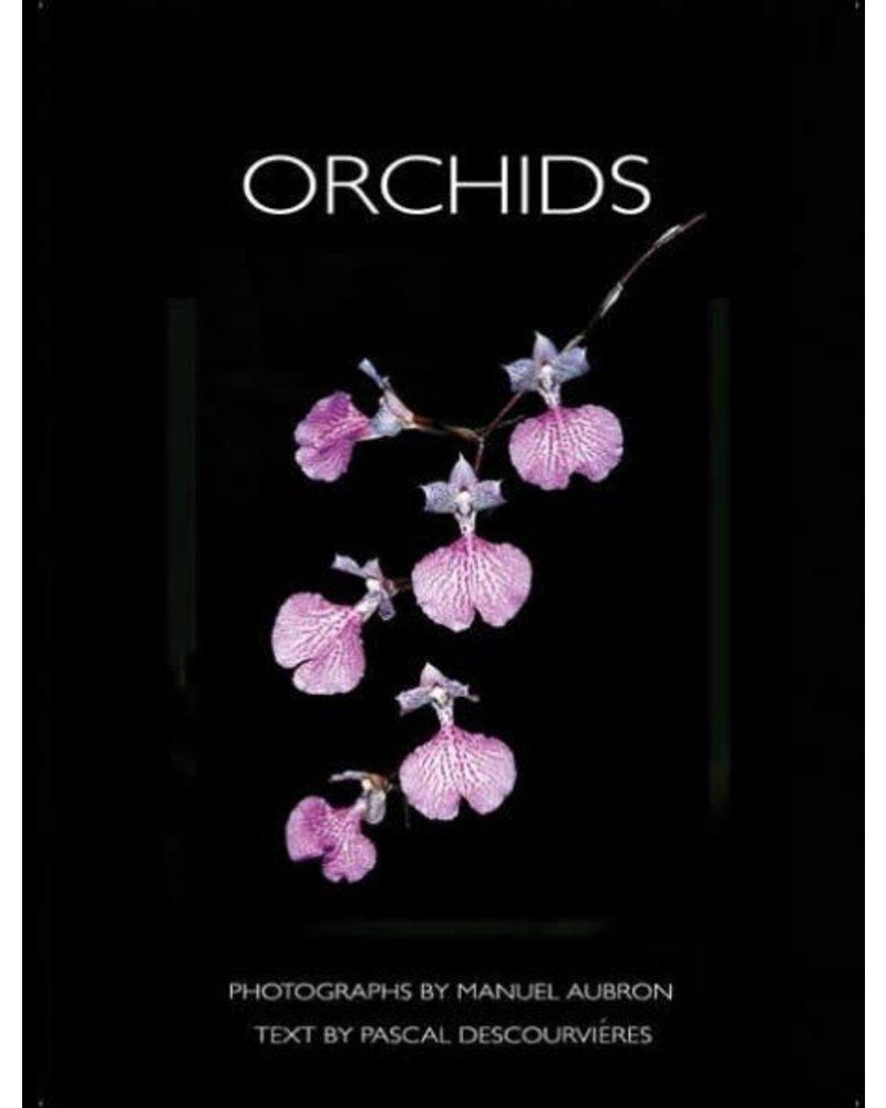 Orchids by Manuel Aubron