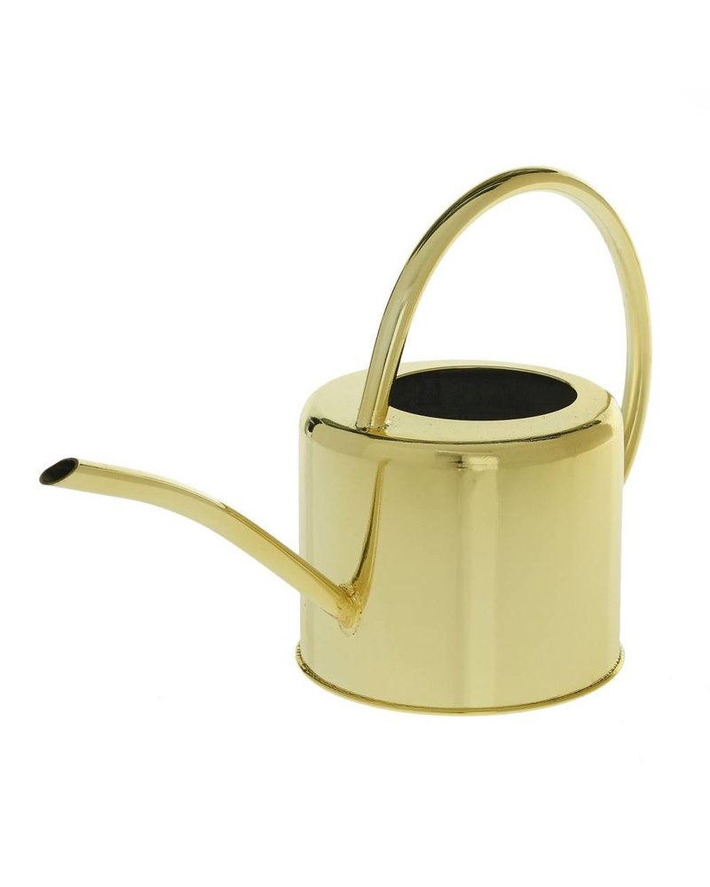 Accent Decor Henri Gold Watering Can