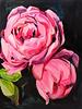 Laura Collins Floral No.5