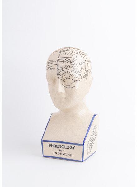 Phrenology Bust