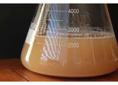 YEAST CULTURING-AIREATION