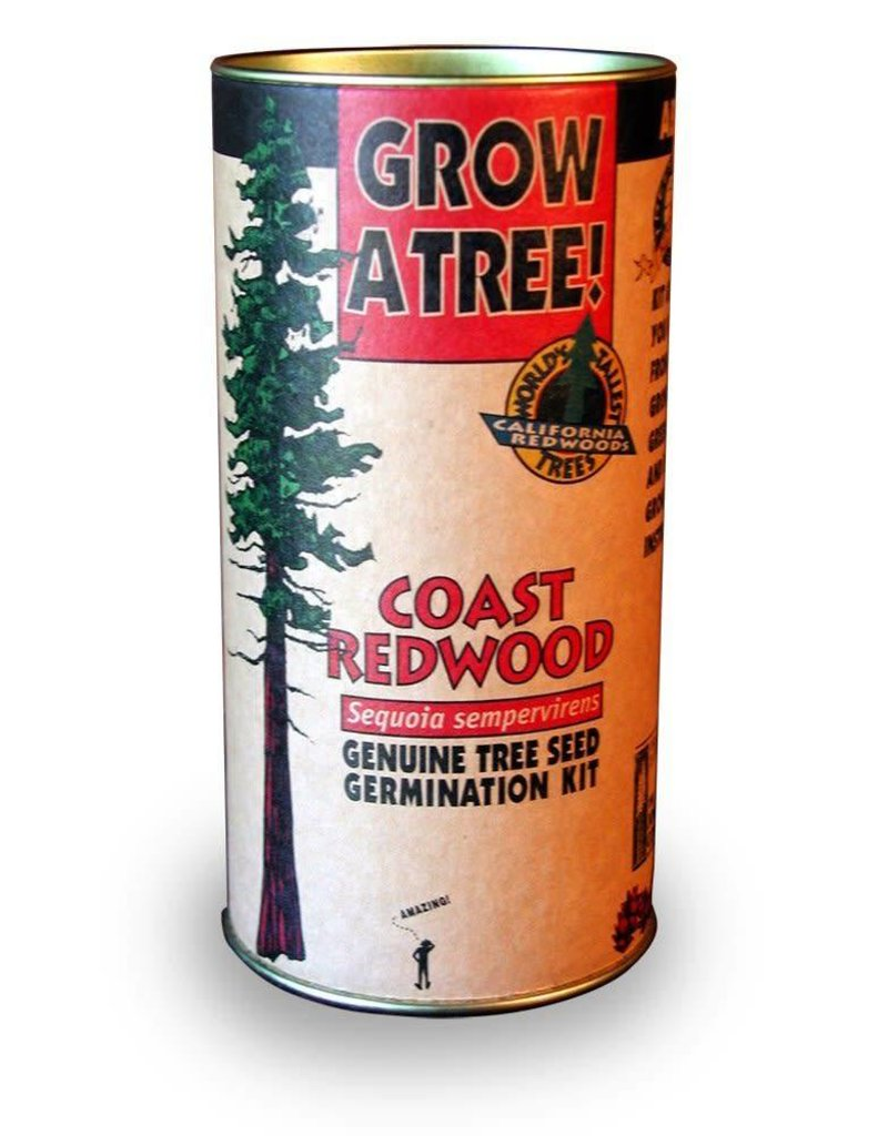 Channel Craft Grow Kit - Coastal Redwood