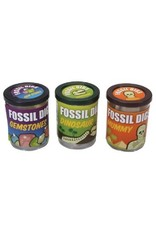 Fossil Dig (Assorted)