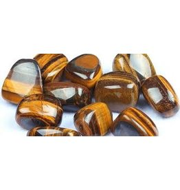 Squire Boone Village Tiger's Eye (Tumbled)