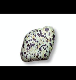 Squire Boone Village Rock/Mineral - Tumbled Dalmatian Stone