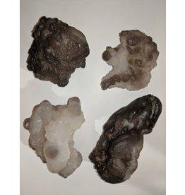 Squire Boone Village Botryoidal Chalcedony