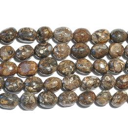 Squire Boone Village Rock/Mineral - Tumbled Turritella Agate Fossil