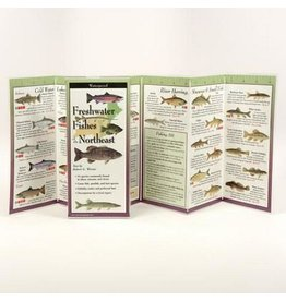 Earth Sea Sky Waterproof Guide - Freshwater Fishes of the Northeast