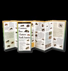 Earth Sea Sky Waterproof Guide - Common Bees of Eastern North America