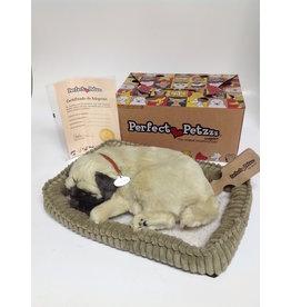 Perfect Petzzz Perfect Petzzz- Pug