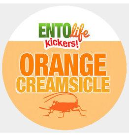 Ento Life Kickers! Orange Creamsicle Roasted Crickets Snack