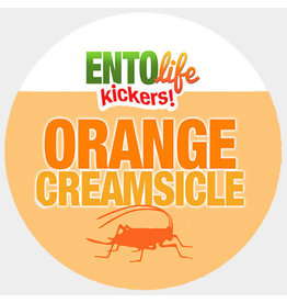 Ento Life Kickers! Roasted Crickets Snack - Orange Creamsicle