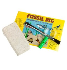 The Young Scientist Club Dig Real Fossils! Tube