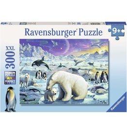 Ravensburger Ravensburger Puzzle Polar Animals (300 Pieces)